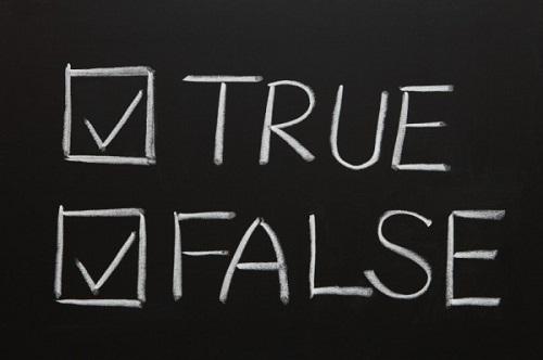 Значение true JavaScript. Значение false JavaScript. Типы данных JavaScript.