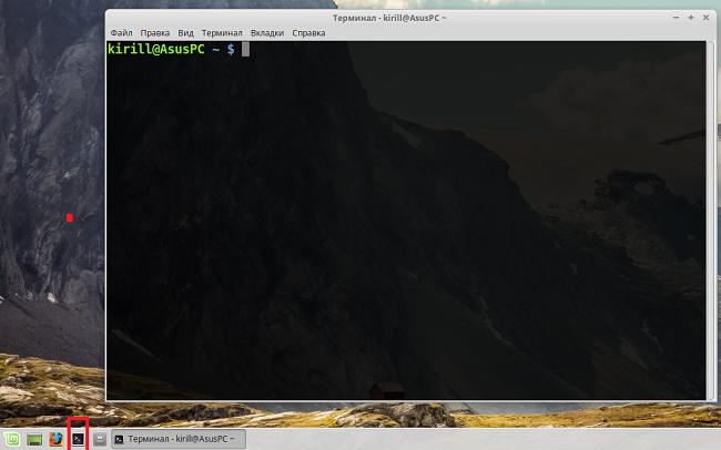 Окно эмулятора терминала в Linux Mint
