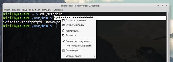 Операции копирования и вставки можно выполнять при помощи контекстного меню эмулятора терминала