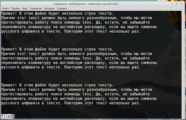 Текстовый файл, открытый командой less
