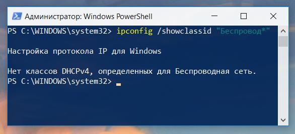 Утилита ipconfig показала, что у данного интерфейса еще нет класса DHCP клиента