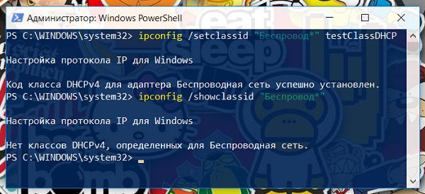 Команда ipconfig позволяет изменить класс DHCP пользователя в Windows