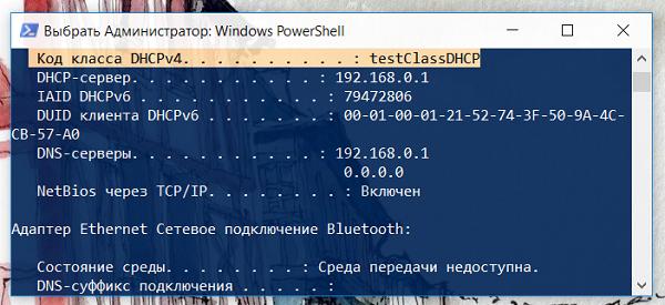 Смотрим код класса DHCPv4 командой ipconfig /all