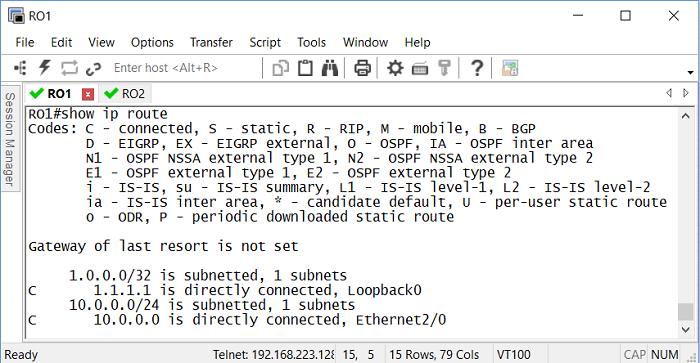 1.3 Таблица маршрутизации первого роутера сразу после настройки IP